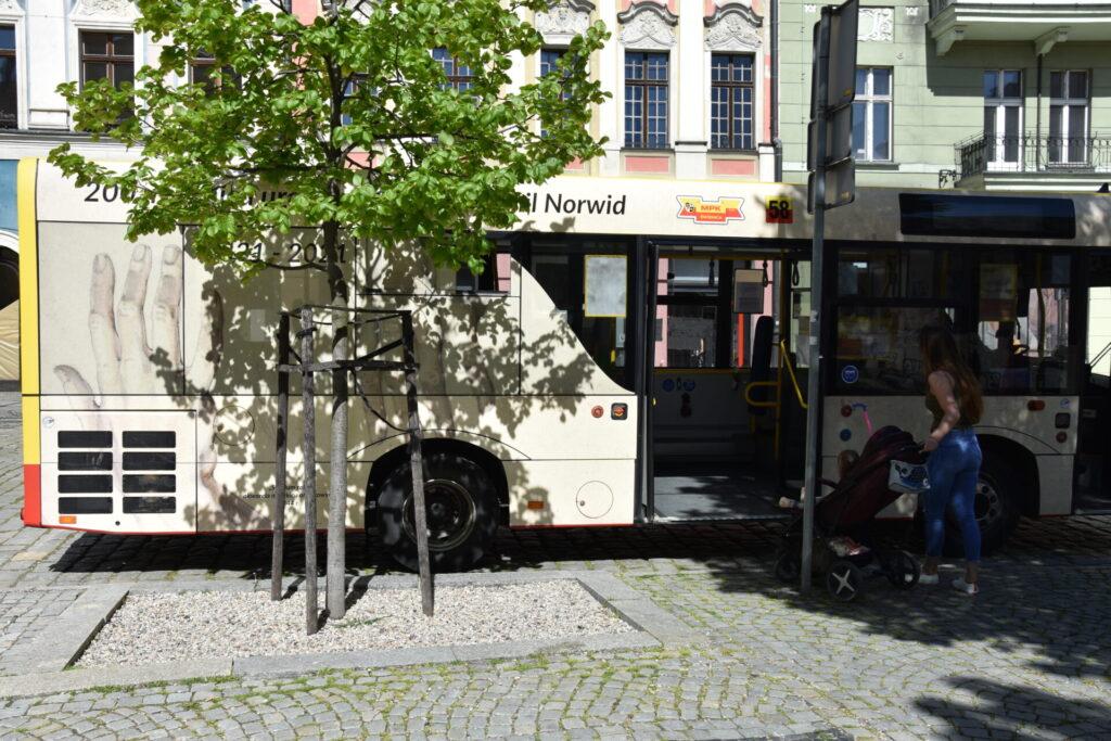 NORWIDbus