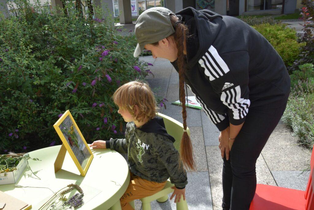 Dzieci na skwerze z dzikami,na warsztatach tworzenia naturalnych mydełek i obrazów z polnych kwiatów