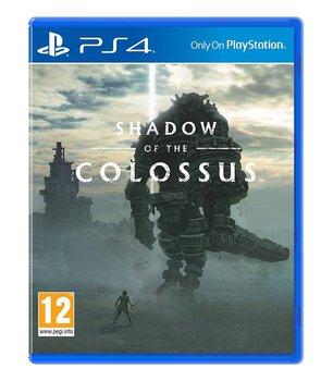 okładka gry na PS4 shadow of the colossus